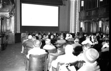 Kino Wien